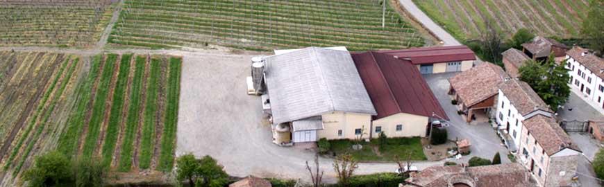 Azienda Manuelina